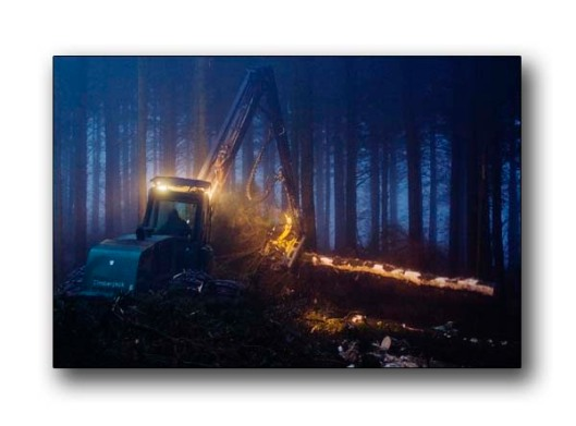 Commercial forestry images