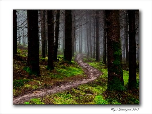 Kilkenny landscape images